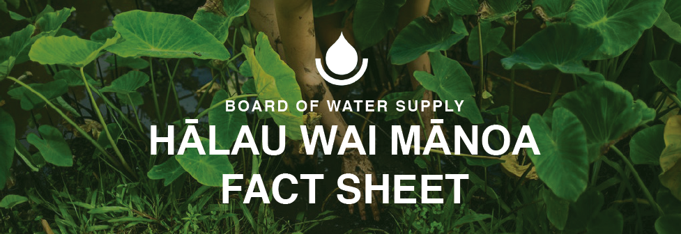 bws halau wai manoa fact sheet header