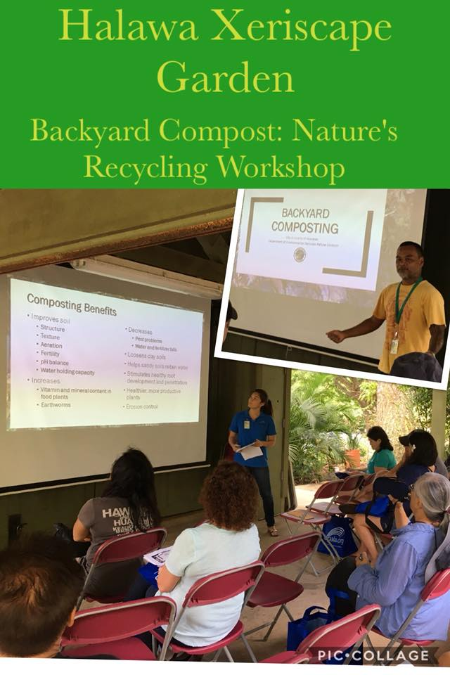 Backyard Composting: Nature's Recycling