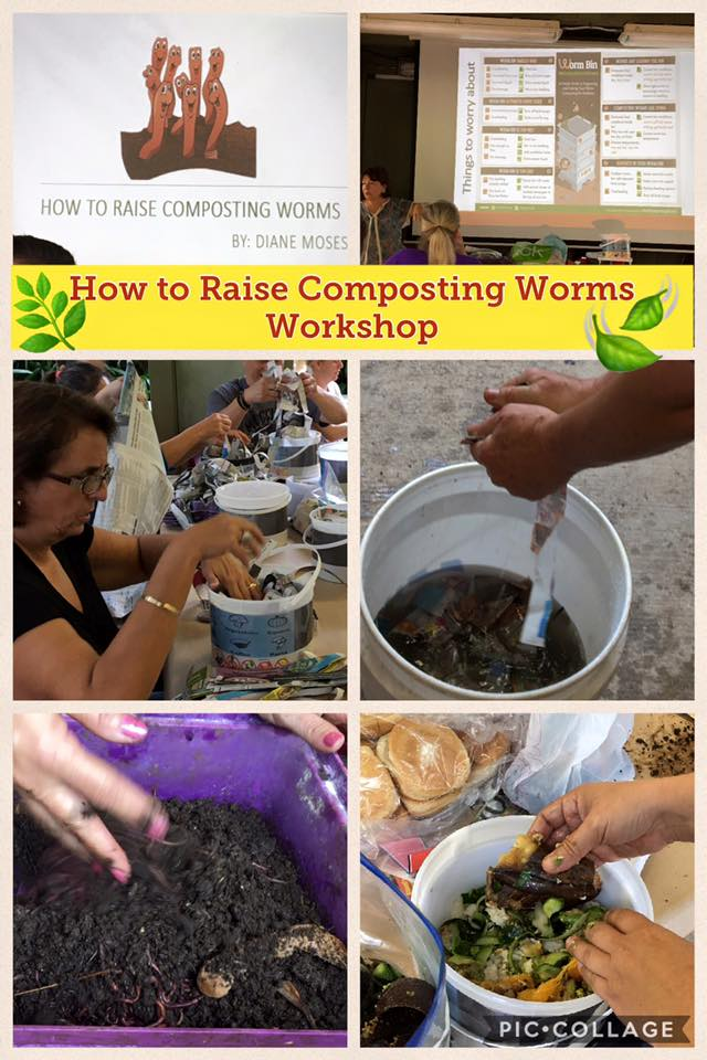 How to Raise Composting Worms