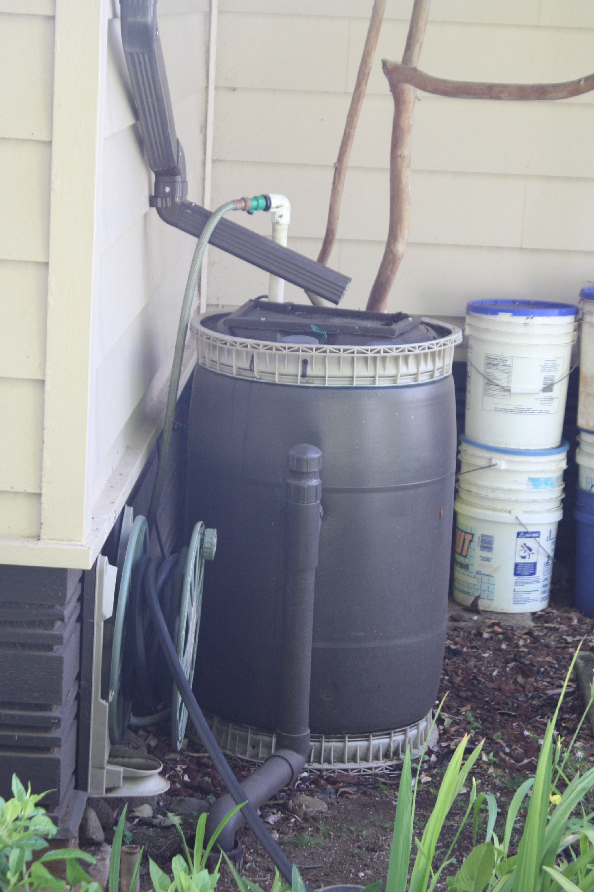 black rain barrel example