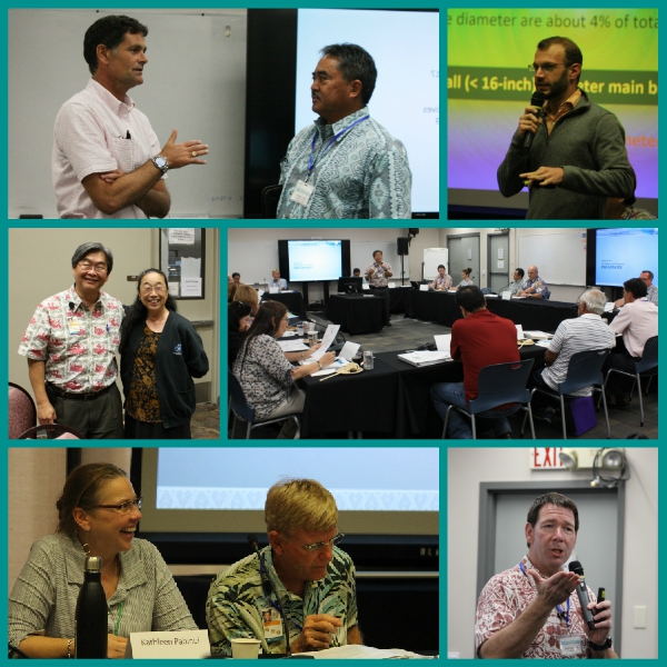 stakeholder advisory group collage june 2017