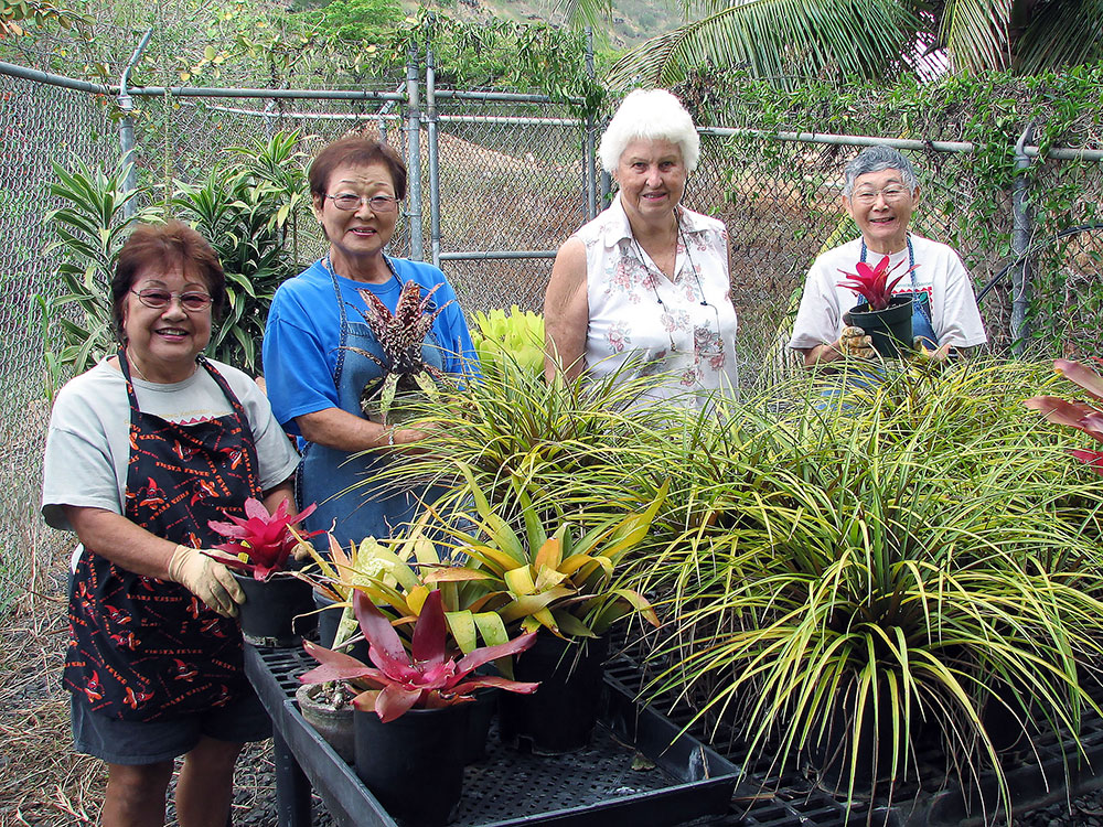 volunteer at halawa xeriscape garden